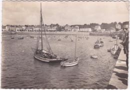 22. Gf. SAINT-QUAY-PORTRIEUX. Le Port Et La Plage De Portrieux. 17 - Saint-Quay-Portrieux