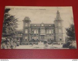 ANDENELLE  -  Château César  -  Vallée De La Meuse -  1920 - Andenne