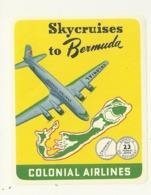 ETATS UNIS COLONIAL AIRLINES SKYCRUISES TO BERMUDA BERMUDES ETIQUETTE AVION AVIATION COMPAGNIE AERIENNE PUBLICITE - Baggage Labels & Tags