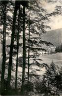 Sternberg - Blick In Den Obergrund (141) - Tchéquie