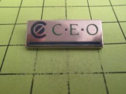 513e Pin's Pins / Beau Et Rare / THEME MARQUES / CEO C.E.O Chaine Des Exploiteurs Occidentaux ? - Informatique