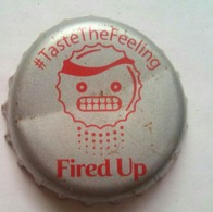 Coca Cola FIRED UP - Soda