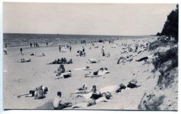 Photo. Beach. Naked Torso. Recreation. - Persone Anonimi