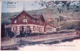 Publicité Chocolat PETER'S, Vevey, Gare De Départ Du Funiculaire, Chemin De Fer Du Mont-Pélerin (368) - Werbepostkarten