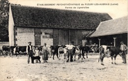 Thematiques 45 Loiret Fleury Les Aubrais Etablissement Psychothérapique Ferme De Lignerolles Animée Paysans - Autres Communes