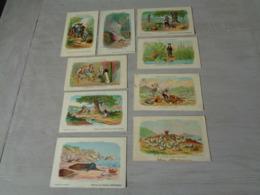 Beau Lot De 9 Cartes Des Fables De Lafontaine - Fabel - Cartes Postales