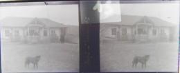 GORNESTI, Mures, Transylvania :  Une Maison.  Vers 1900. Plaque Verre Stéréoscopique, Négatif. Transylvanie - Plaques De Verre