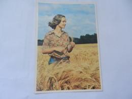 MASSEY FERGUSON - Werbepostkarten