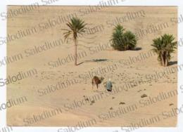 SUD TUNISIEN SAHARA -  Tunisia Republique Tunisienne - Cammello Camel - Tunisia