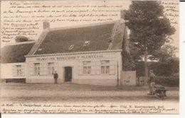 Moll - 't Borgerhout 1903 (Tramstatie + Stationchef (Geanimeerd) - Mol