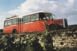 AUTOBUS,    ZELLERTAL, RHEINLAND /PFALZ - Busse & Reisebusse