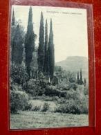 (FP.A02) BORDIGHERA - CIPRESSI E SANTA CROCE (IMPERIA) - Imperia