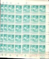 Belgique YT N° 97 X 75 Timbres Neufs ** MNH. TB. A Saisir! - 1910-1911 Caritas