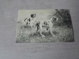 Illustrateur ( 1474 )   Pas Signée  - Carte Genre Viennoise -  Chiens De Chasse  Chien  Honden  Hond  Jacht - Illustrateurs & Photographes