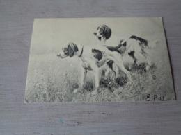 Illustrateur ( 1477 )   Pas Signée  - Carte Genre Viennoise -  Chiens De Chasse  Chien  Honden  Hond  Jacht - Illustrateurs & Photographes