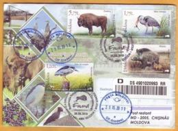 2018 Moldova Moldavie Fauna Private Used FDC Nature, Nature Reserve. Forest. Birds. Animals. Boar. Zubr. - Stamps