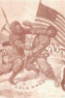 [MD3943] CPM - COLLEZIONE POSTALE ARTICA CON ANNULLO FIRME N° 27 1908/9 R. PEARY F. COOK - PERFETTA - NV - Storia