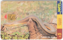 URUGUAY A-282 Chip Antel - Animal, Snake - Used - Uruguay