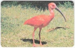 VENEZUELA B-170 Chip CanTV - Animal, Bird - Used - Venezuela
