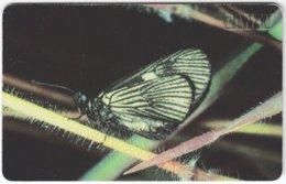 VENEZUELA B-183 Chip CanTV - Animal, Butterfly - Used - Venezuela