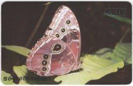 VENEZUELA B-186 Chip CanTV - Animal, Butterfly - Used - Venezuela