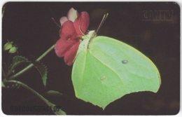 VENEZUELA B-187 Chip CanTV - Animal, Butterfly - Used - Venezuela