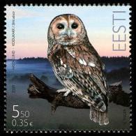 Estland 2009: Eule - Estonia