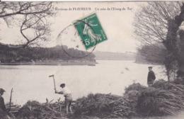 [56] Morbihan > Ploemeur Un Coin De L'étang Du Ter RECHERCHE RARE - Plömeur