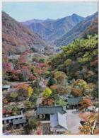Corée Du Sud Vue Panoramique Du Mont  Naejang  TBE - Korea (Zuid)