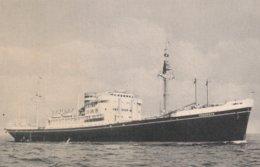 M.V. Dongedijk, Holland America Line - Dampfer