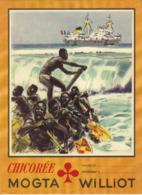 Protège Cahier Chicorée MOGTA - Williot - L'Afrique Noire De L'Ouest - Alimentaire