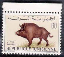 Faune Tunisienne Sus Scrofa Hystrix Cristata Fennecus Zerda Canis Aurens - Tunisia (1956-...)