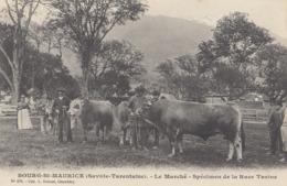 BOURG-ST-MAURICE: Le Marché - Specimen De La Race Tarine - Bourg Saint Maurice