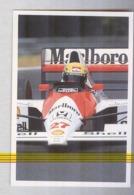 SENNA SU MCLAREN.....PILOTA....AUTO..CAR....VOITURE....CORSE...FORMULA 1 UNO - Car Racing - F1
