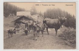 AB288 - SUISSE - PATURAGE ALPESTRE - Troupeau Sur L'alpe - ALPENWEIDE - Andere