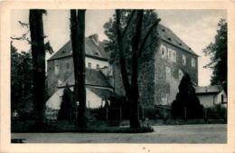 Freiwaldau Im Altvatergebirge - Schloss (506) * 26. 1. 1929 - Tchéquie