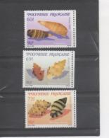 POLYNESIE Française - Faune Marine - Coquillages - Microcoquillages : Triphoridae (gastéropodes Marins), Muricadae - Polynésie Française