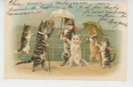 CHATS - CAT - Jolie Carte Fantaisie Chats Humanisés Au Bord De La Mer - Chats