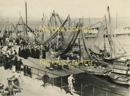 DOUARNENEZ Bateaux Navires Pêcheurs Groupe Bigoudènes Vers 1950 Grande Photo Finistère 29 - Lieux