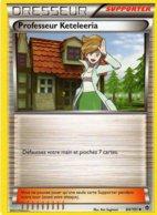 Carte Pokemon 84/101 Professeur Keteleeria 2013 - Pokemon