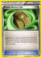Carte Pokemon 87/101 Fossile Racine Lilia 2013 - Pokemon