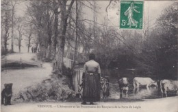 VERNEUIL - L'Abreuvoir Et Les Promenades Des Remparts De La Porte De L'Aigle - Vaches - Verneuil Sur Seine