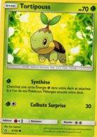Carte Pokemon 6/156 Tortipouss 70pv 2018 - Pokemon