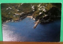 Isola PONZA Porticciolo Porto La Forna   CARTOLINA Non Viaggiata - Altre Città
