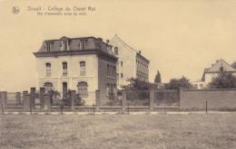 Sirault, Collège Du Christ Roi, Vue D'ensemble Prise Du Midi (pk61825) - Saint-Ghislain