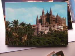 Spanje Espana Spain Mallorca Palma Baleares Catedral - Mallorca
