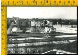 Rovigo Commenda Alluvione Novembre 1951 - Rovigo