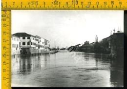 Rovigo Adria Bacino Canalbianco Alluvione Novembre 1951 - Rovigo