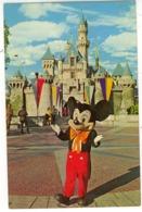DISNEY DISNEYLAND IT AL STARTED WHIT A MOUSE - Disneyland