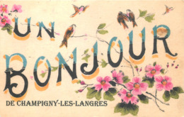 52 - Haute Marne - CHAMPIGNY LES LANGRES - 521115 -  Fantaisie Moderne - CPM Au Format CPA 9 X 14 Cm - France